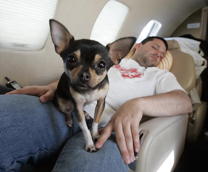 "SIMON SAYS:   ""The story was about Tony Stewart and his purchase of Eldora Speedway in Ohio. He was racing in Martinsville.  Between the final practice and the race we flew up to see the track. He was great, so laid back. We squeezed in on his plane, and he went to sleep straight away. I thought the dog was hilarious. It was just a fun picture.""  Shot with a Canon EOS-1D Mark II, EF 16-35mm f/2.8L USM"