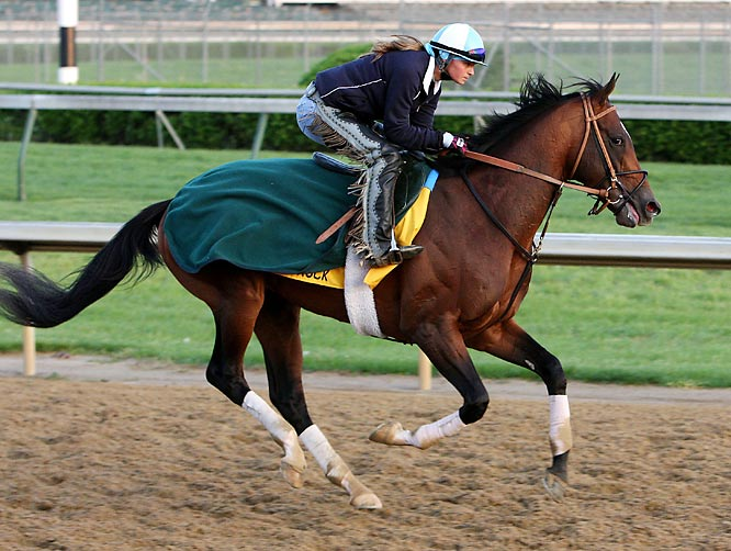 Post Position: 7<br>Trainer: Barclay Tagg<br>Jockey: Javier Castellano<br>His surprise win in the Tampa Bay Derby punched his Derby ticket, but there is little else on Big Truck's resume to recommend him as a threat in the toughest horse race in the world. His victory on that day was his first win since September and he followed it with a disastrous 11th-place finish in the Blue Grass Stakes, which his connections will write off to his disliking Keeneland's artificial surface. Tagg has a much better shot at repeating his Funny Cide karma with Tale of Ekati.