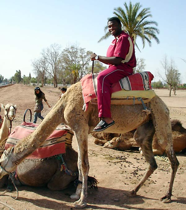 ... and some camels.