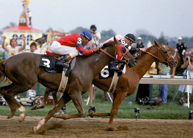 Most folks only remember the 1978 Triple Crown won by Affirmed (6) with the dogged Alydar (3) finishing second in all three races (he briefly poked his head in front during the Belmont stretch run). But the two great colts met 10 times between June '77 and August '88. Affirmed won seven, with Alydar taking the Great American, the Champagne, and the Travers (when Affirmed was disqualified for interfering with his rival).