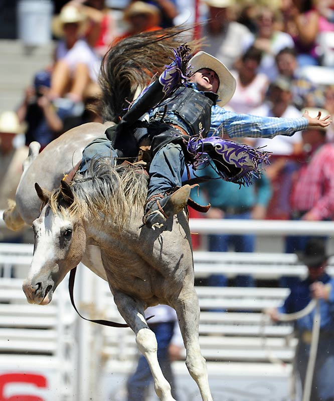 In bareback bronc, the rider holds on for dear life with only a suitcase handle-like rigging made of leather and rawhide for him to grasp onto.