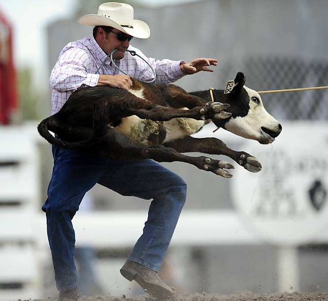 The calves have a 30-foot head start before the rider tries to complete the three steps faster than any of the other contestants.