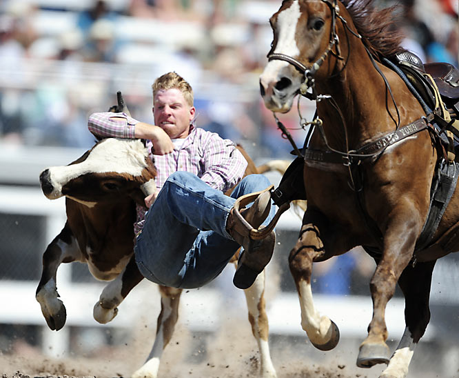 This cowboy wrestles his steer to the ground.
