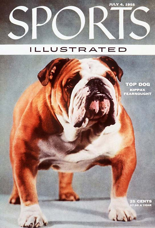 By 1955, bulldogs were among the least popular breed of dogs for American pet owners. But then came Kippax Fearnought, who was awarded best in show at the Westminster Dog Show in 1955 and helped raise the popularity of this much maligned breed of pooches.
