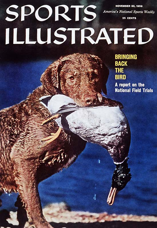 This image of a Chesapeake Retriever holding a dead bird in his mouth remains one of the most unique and eye-opening covers in SI's 54-year history.
