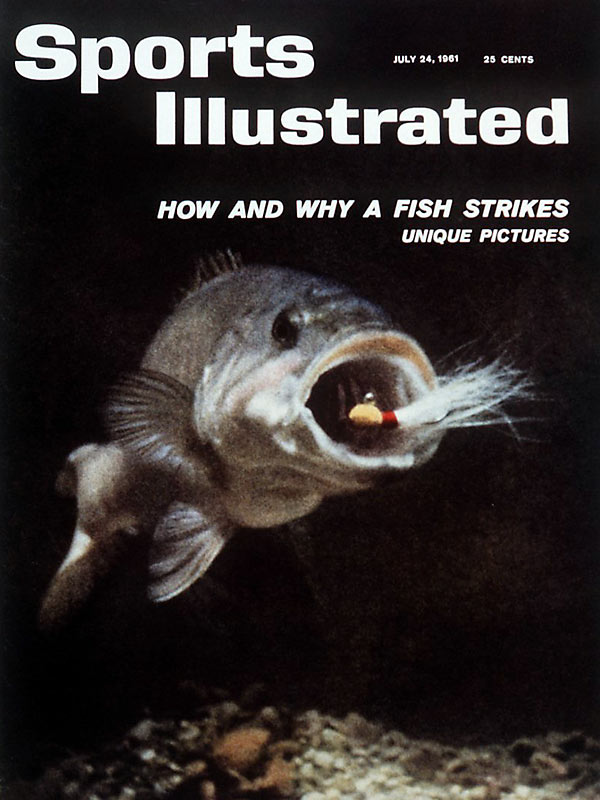Ever wonder how and why a fish strikes? SI tackled this question in a July 1961 cover story.