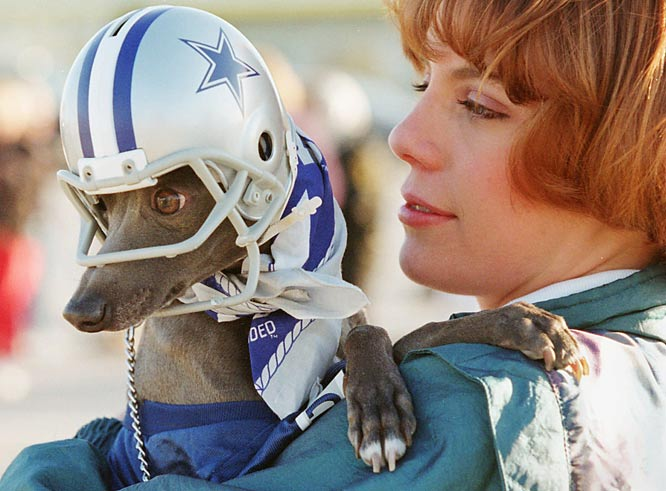 Dallas fan Misty Brewer can thank her Italian greyhound, Deeogee, for getting her into Super Bowl XXX. Brewer and her husband won two tickets to the game between the Cowboys and Steelers after winning a contest to dress your pet in Cowboys attire.