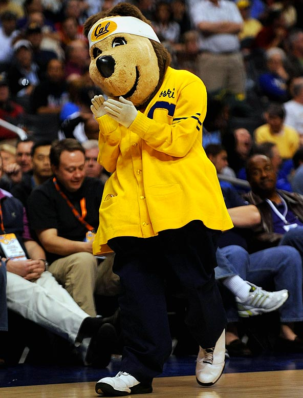 Bear wearing sunshine-colored cardigan = California dreamy.