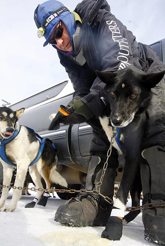 Rick Larson puts booties on his sled dog as they ready for the big race.
