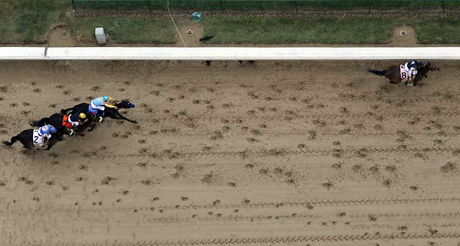 The race seemed to have been set up perfectly for Pioneerof the Nile in the stretch, but Mine That Bird ran by as though every other horse on the track were standing still.