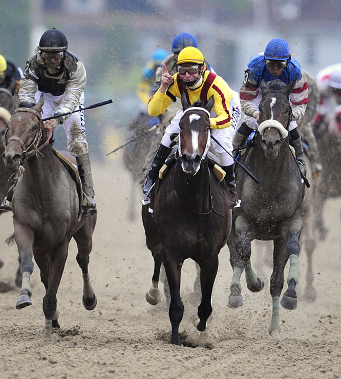 The Big Three from the Preakness: First place, Rachel Alexandra (center); second place, Mine That Bird (left) and third place, Musket Man (right).