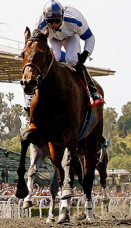 Jockey: Garrett Gomez<br>Trainer: Jerry Hollendorfer<br><br> Candy was fifth in the Kentucky Derby his first time out on dirt, so he can be expected to move forward in the Belmont. But even with two-time Eclipse-Award winner Garrett Gomez in the irons, the colt has obstacles to overcome. He's never run as fast over dirt as Mine That Bird or some of the other contenders here. And like the Bird, Chocolate Candy is a late-running specialist in a race that doesn't have much early speed.