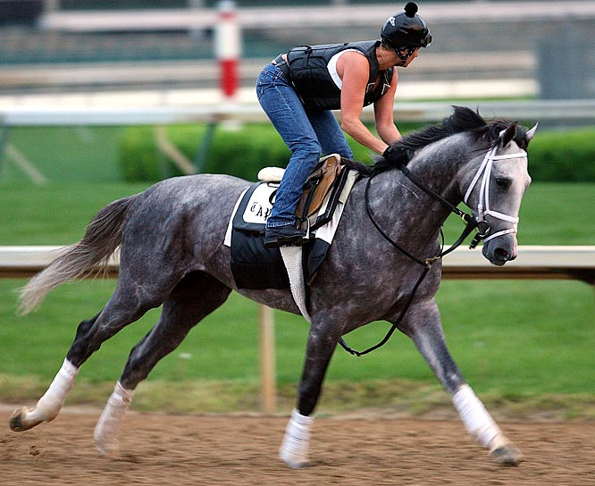 Jockey: John Velazquez<br>Trainer: Todd Pletcher<br><br>Dunkirk is another Derby contender (he finished 11th) who skipped the Preakness to get ready for the Belmont. Perhaps he didn't care for all the mud at Churchill Downs during his listless Derby, because, on paper, the big gray colt might be the best horse in this field. He's run the fastest race, he has a regal pedigree and his connections -- owner, trainer and jockey -- are all first rate horsemen.