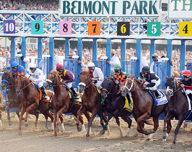 More then 45,000 were on hand as a field of 12 took the starting gate for the final jewel of horse racing's Triple Crown on a hot, sunny Saturday at Belmont Park.