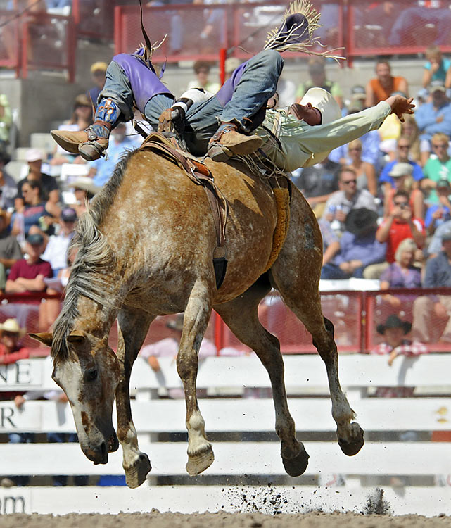 "Cheyenne Frontier Days is revered by cowboys as ""The Daddy of 'em All,"" the 10-day July event that started in 1897 draws an estimated 300,000 people to the area every year. Featuring the regular season's richest outdoor professional rodeo and and all-star lineup of country music, the event is produced by 2,500 volunteers and introduces thousands of new fans to the old frontier each summer.  Brian Bain gets thrown around on his horse."
