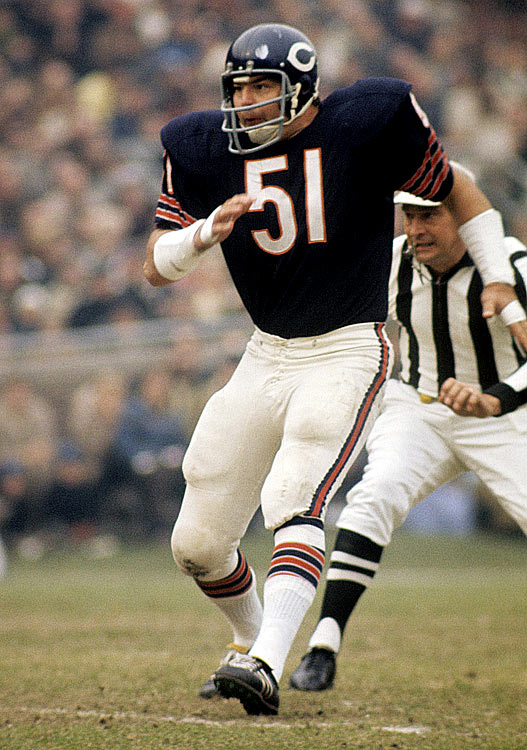 Fearsome linebacker Dick Butkus backpedals into pass coverage during a Nov. 8 game against the San Francisco 49ers in Wrigley Field. Though Butkus compiled 22 interceptions throughout his Hall of Fame career, he came up empty in this one, as the 49ers rolled 37-16.
