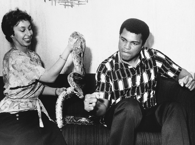 Days before his 1977 fight against Alfredo Evangelista, Heavyweight Champion Muhammad Ali clowns around with a snake held by Gladys Rosa of Don King Productions.