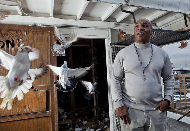 Tyson looking at pigeons in a publicity photograph for  Taking On Tyson .