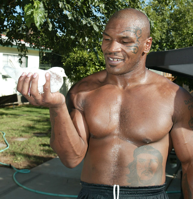 Tyson plays with a bird outside his training camp in Phoenix, Ariz., near the end of his fighting career.