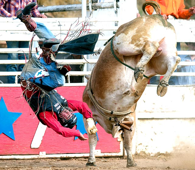 And that's why you wear a helmet. Game Face (right) bucks California native Tim Myers off his back during the Mother Lode Round-up in Sonora, Calif.