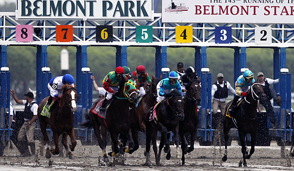 It's clear to see how the poor start affected Animal Kingdom (center, in green and red), who fell more than 12 lengths behind Shackleford and did well to finish in the middle of the pack.