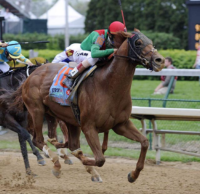 The Kentucky Derby winner nearly entered the Belmont looking to become the first Triple Crown winner since Affirmed in 1978, but his attempt to run down Shackleford at the Preakness came up just short. Animal Kingdom used the same plan in both races: lurking near the back of the pack, moving up along the outside and closing hard in the final stretch. The Belmont sets up well for the strategy to work again. The only risk is that the mile-and-a-half distance will weaken Animal Kingdom's kick. If not, he should end the Triple Crown the same way he started it -- with a win.