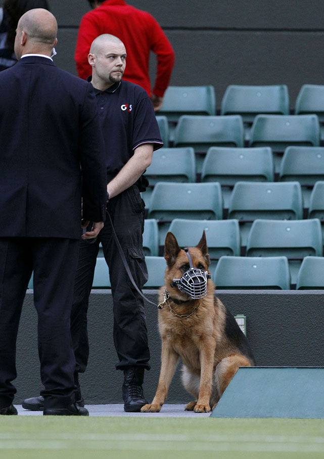 A security guard is seen with a dog on Court 1 at the All England Club.