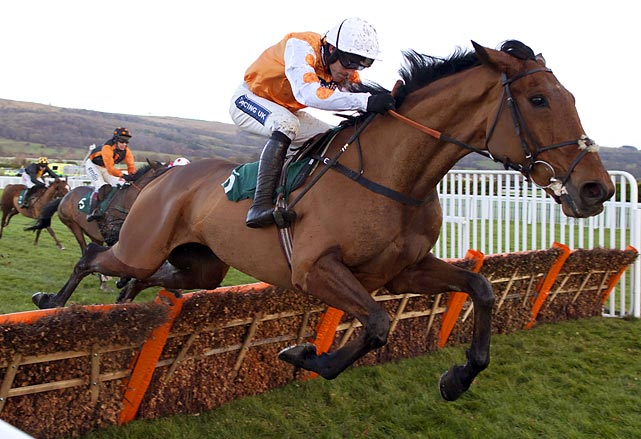 Paul Nichols won his 150th Cheltenham race with Oscargo as his ride.