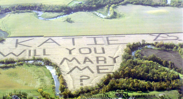 "Nashville Predators center Chris Mueller may not know how to spell ""marry"" (he claims he ran out of room), but when Katie Goltz saw this soybean field on an airplane ride she still said yes."