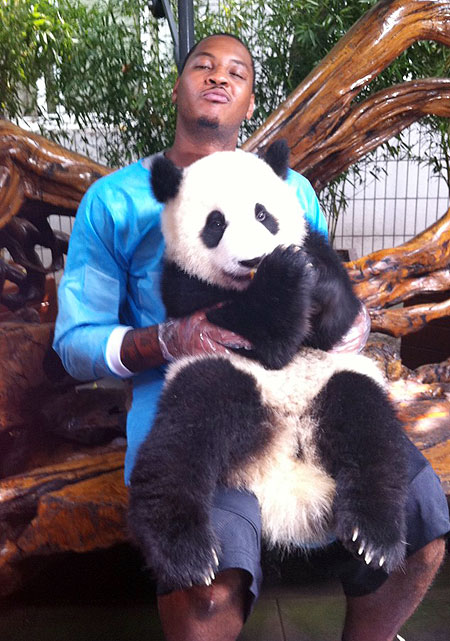 As Carmelo Anthony shows, nothing gives you more street cred than a panda in your lap.