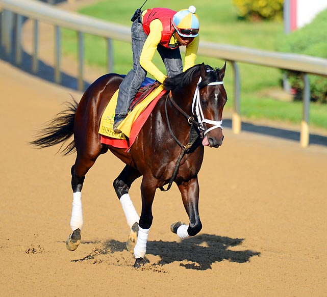 The trackside reports from Louisville suggest that few Kentucky Derby contenders have looked as impressive training up to the race as this son of Malibu Moon. Though he's coming off a sixth-place finish in the Blue Grass Stakes, Prospective has two wins in three other starts this year, including an off-the-pace score in the Tampa Bay Derby two back. Bettors who can draw a line through his effort on the synthetic surface in the Blue Grass could find a price horse for the exotics.