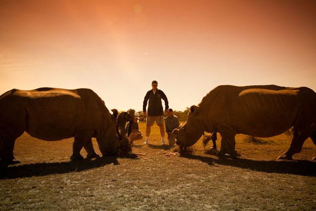 Yao poses with Najin and Suni, two Northern White Rhinos living at Ol Pejeta.
