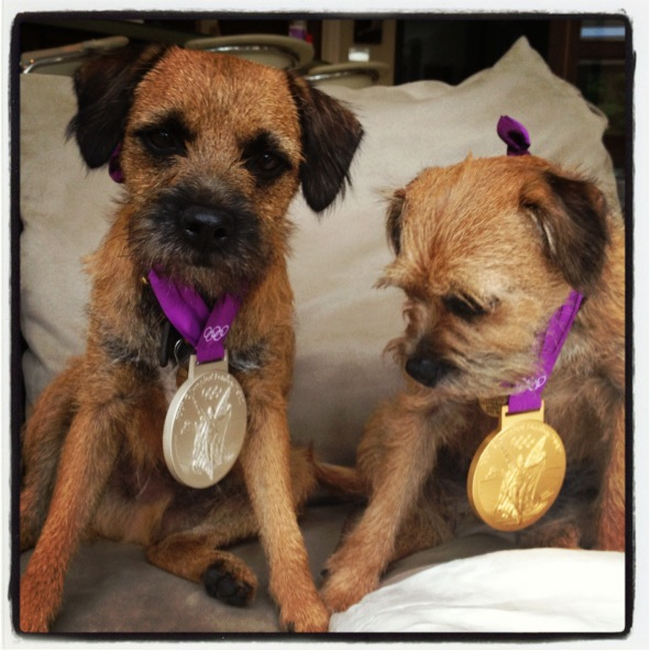 After winning Olympic gold in men's singles and a silver in mixed doubles, Andy Murray shared his hardware with his Border Terriers, Maggie May and Rusty.