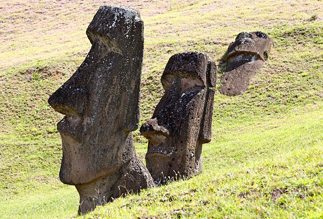The Moai at Rano Raraku, carved from rock.