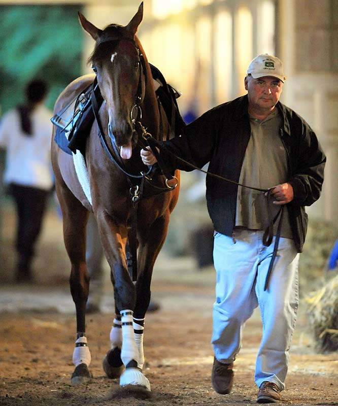 ''I don't think they can beat our horse, so why should I be afraid of them? I feel as confident as I ever have with the horse. He looks better now than he ever looked. Things are as good as they can be.''Trainer Rick Dutrow on Big Brown's odds of winning the 2008 Belmont, despite a minor crack in the horse's hoof.