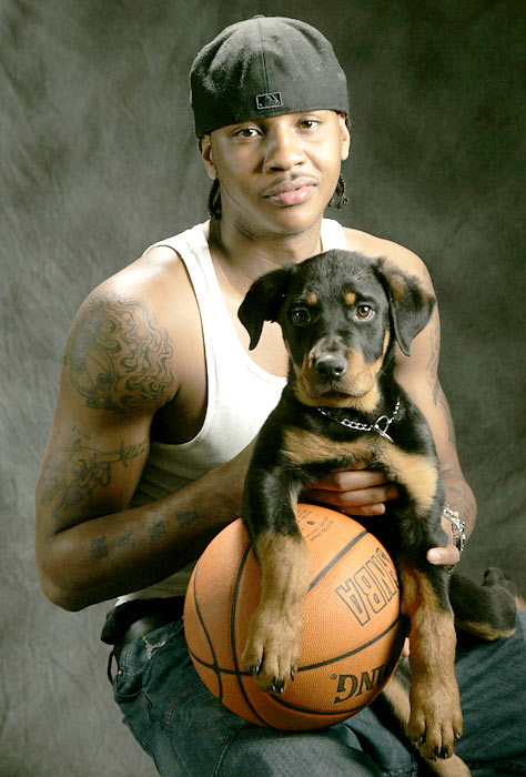 Carmelo Anthony and pup.