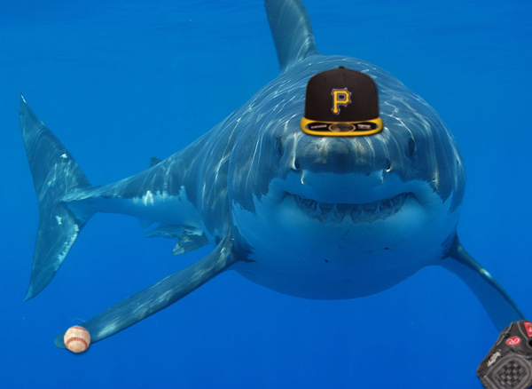 Great White Shark Facts For Kids | An All Star All Shark Mlb Squad For Shark Week Si Kids
