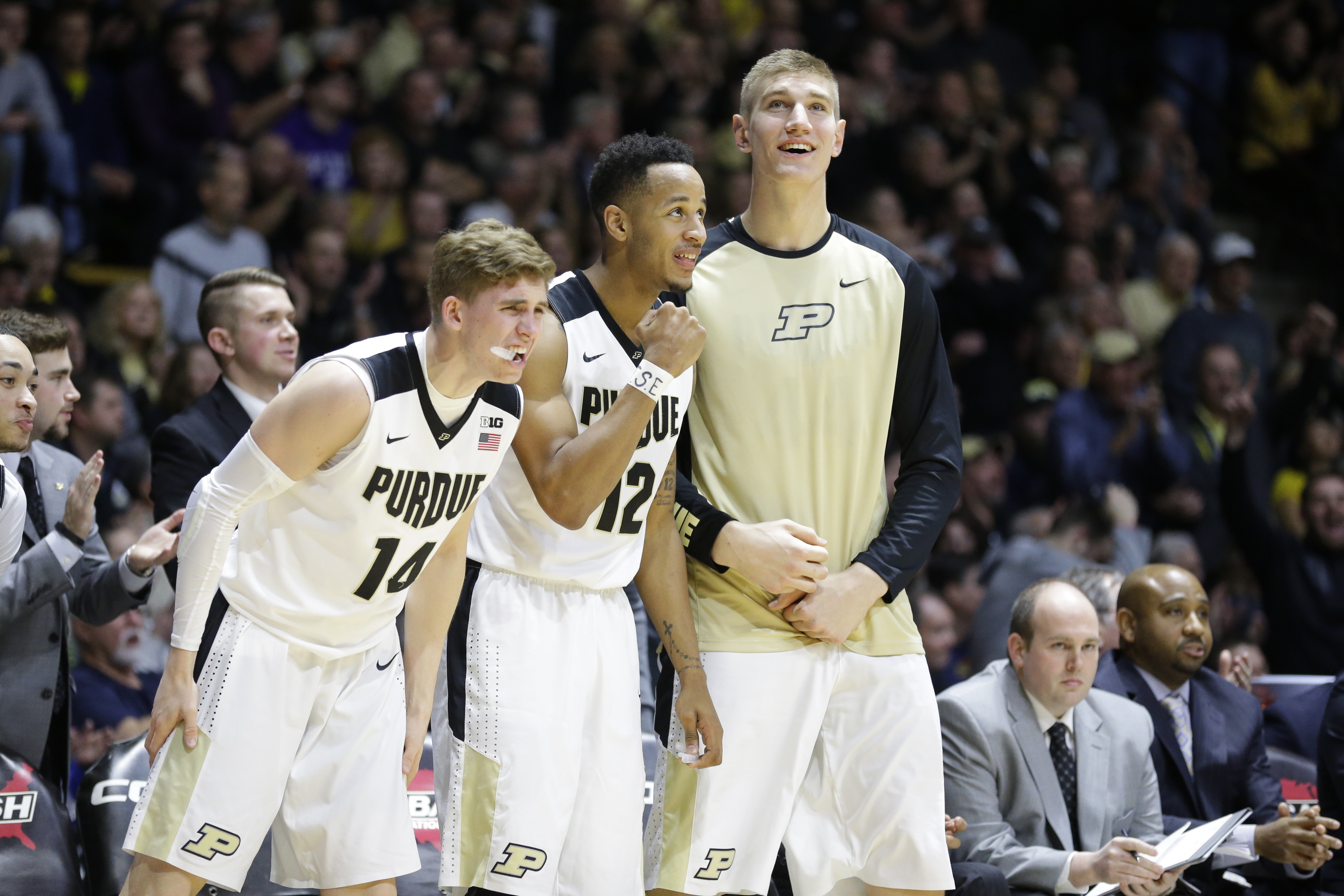 Purdue guard Ryan Cline (14), forward Vince Edwards (12) and center Isaac Haas cheer on the bench during the second half of the team's NCAA college basketball game against the Michigan in West Lafayette, Ind., Thursday, Jan. 7, 2016. Purdue defeated Michi