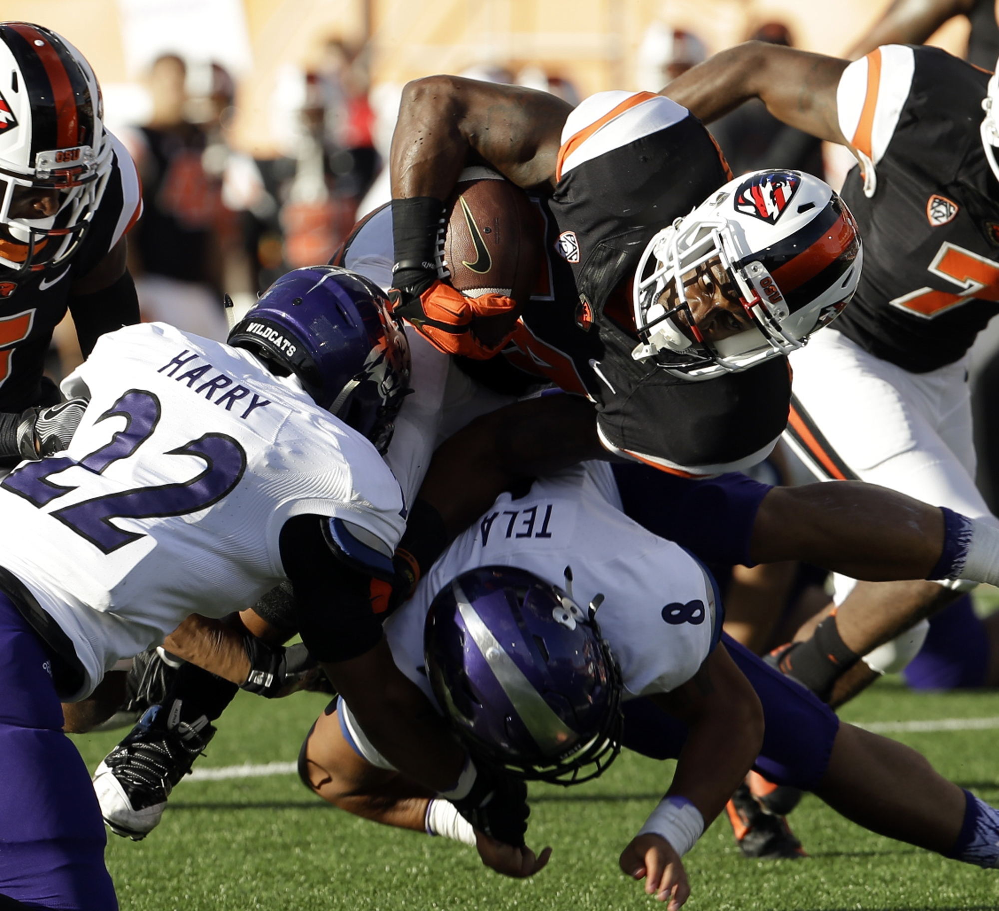 Oregon State running back Storm Woods, right, carries against Weber State corner back Xequille Harry (22) and Emmett Tela (8) during the first half of an NCAA college football game Friday, Sept. 4, 2015, in Corvallis, Ore. (AP Photo/Don Ryan)
