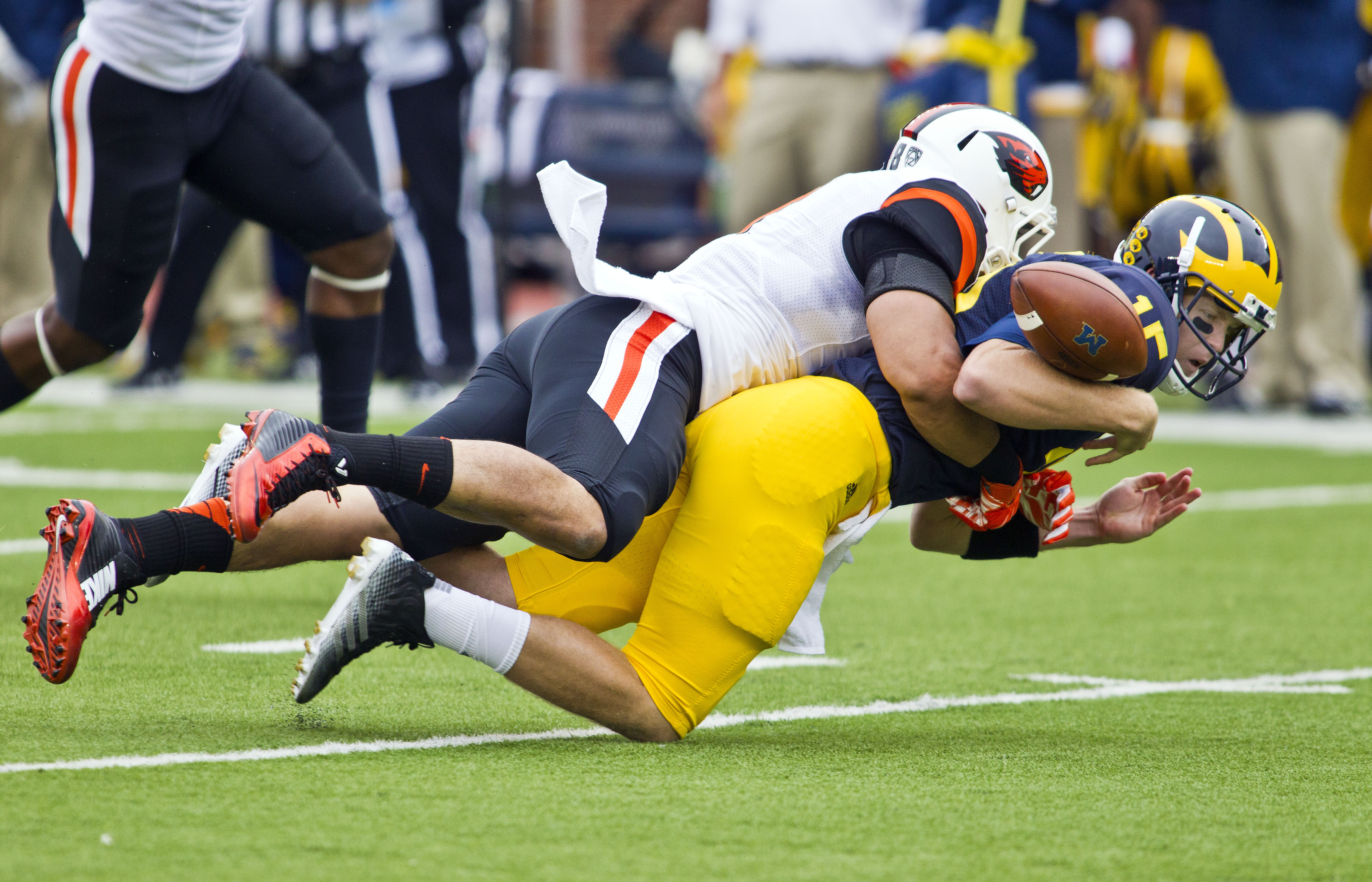 Oregon State linebacker Rommel Mageo, top, sacks Michigan quarterback Jake Rudock, causing a fumble, in the first quarter of an NCAA college football game in Ann Arbor, Mich., Saturday, Sept. 12, 2015. (AP Photo/Tony Ding)