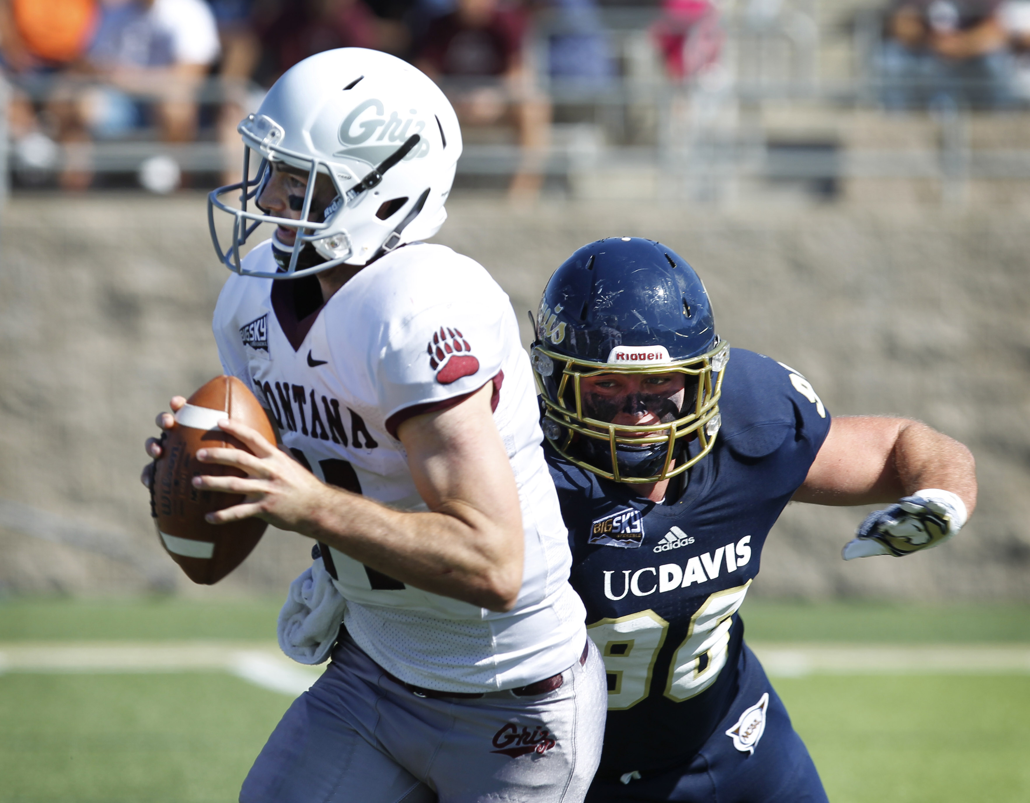 UC Davis left end Brandon Weaver, right, closes in on Montana quarterback Chad Chalich for a sack during the first half an NCAA college football game in Davis, Calif., on Saturday, Oct. 3, 2015. (AP Photo/Steve Yeater)