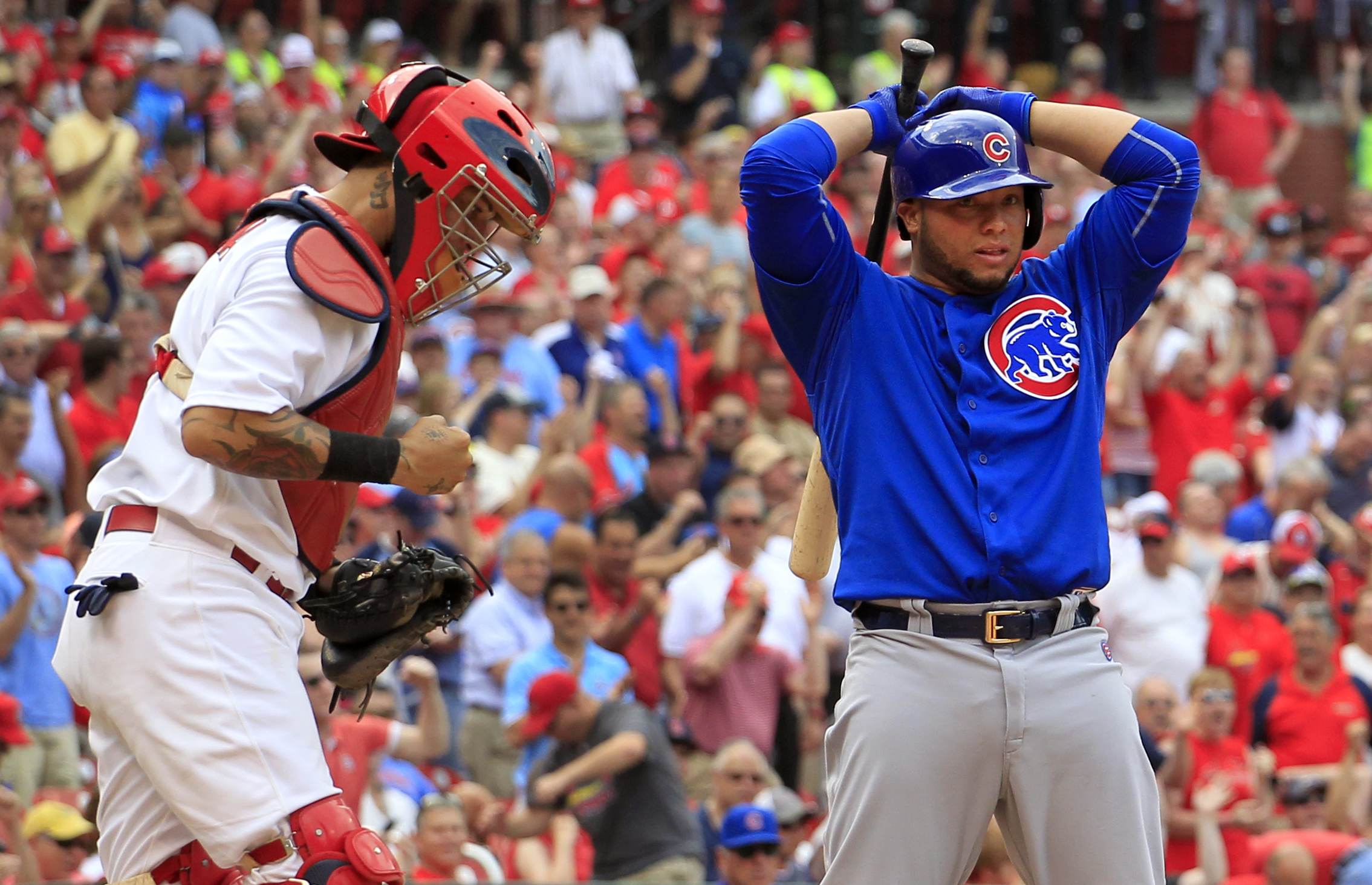 St. Louis Cardinals catcher Yadier Molina, left, pumps his fist as Chicago Cubs' Welington Castillo stands at the plate after Castillo was called out on strikes to end a baseball game Thursday, May 7, 2015, in St. Louis. The Cardinals won 5-1. (AP Photo/J