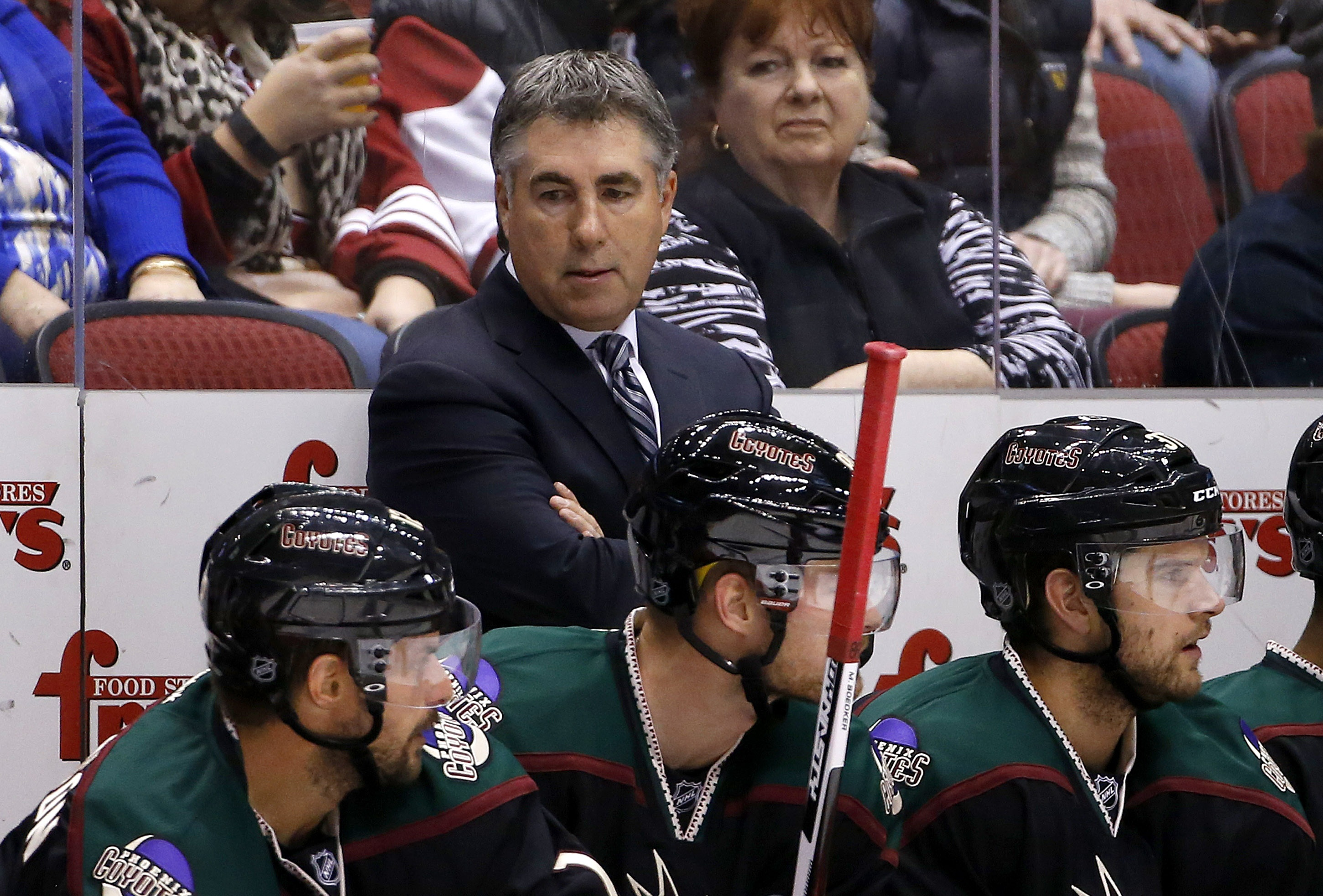 Arizona Coyotes coach Dave Tippett stands on the bench during the second period of his team's NHL hockey game against the Calgary Flames on Friday, Nov. 27, 2015, in Glendale, Ariz. The Coyotes defeated the Flames 2-1 in overtime for Tippett's 500th coach