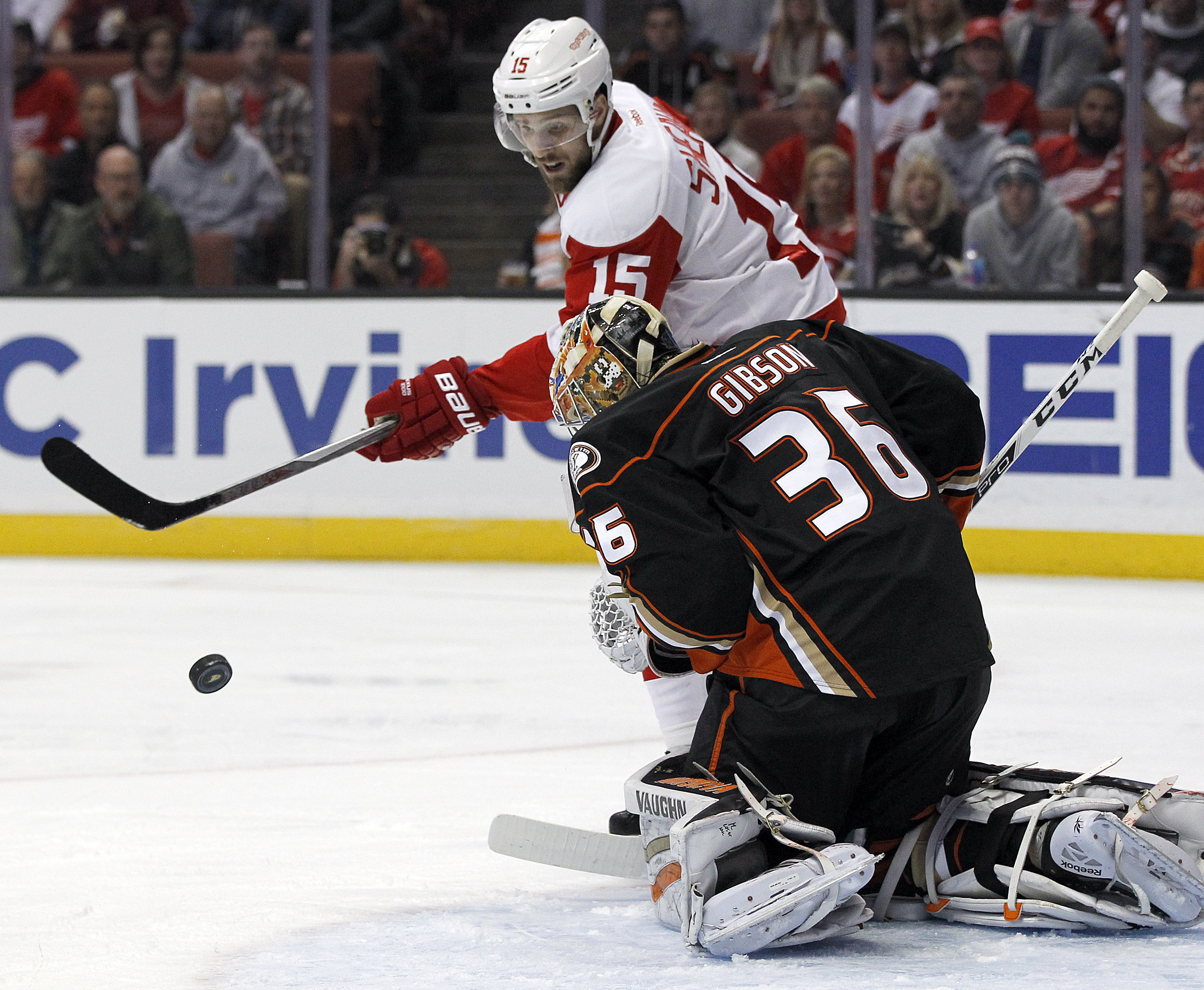 The puck bounces off Anaheim Ducks goalie John Gibson (36) as Detroit Red Wings center Riley Sheahan (15) looks for the rebound during the first period of an NHL hockey game in Anaheim, Calif., Sunday, Jan. 10, 2016. (AP Photo/Alex Gallardo)