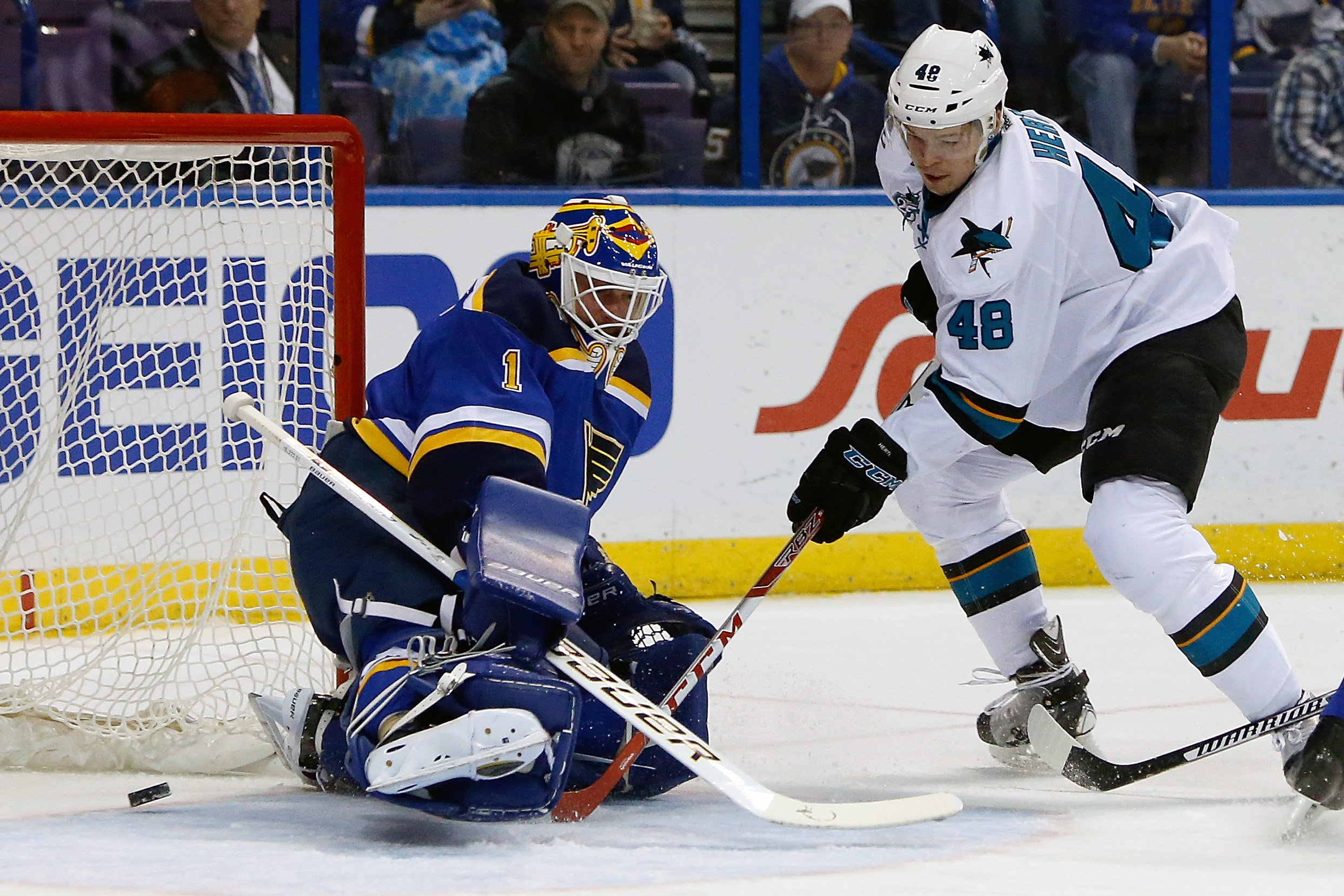 San Jose Sharks' Tomas Hertl, right, of the Czech Republic, gets the puck past St. Louis Blues goalie Brian Elliott  to score a goal during the first period of an NHL hockey game Monday Feb. 22, 2016, in St. Louis. (AP Photo/Scott Kane)