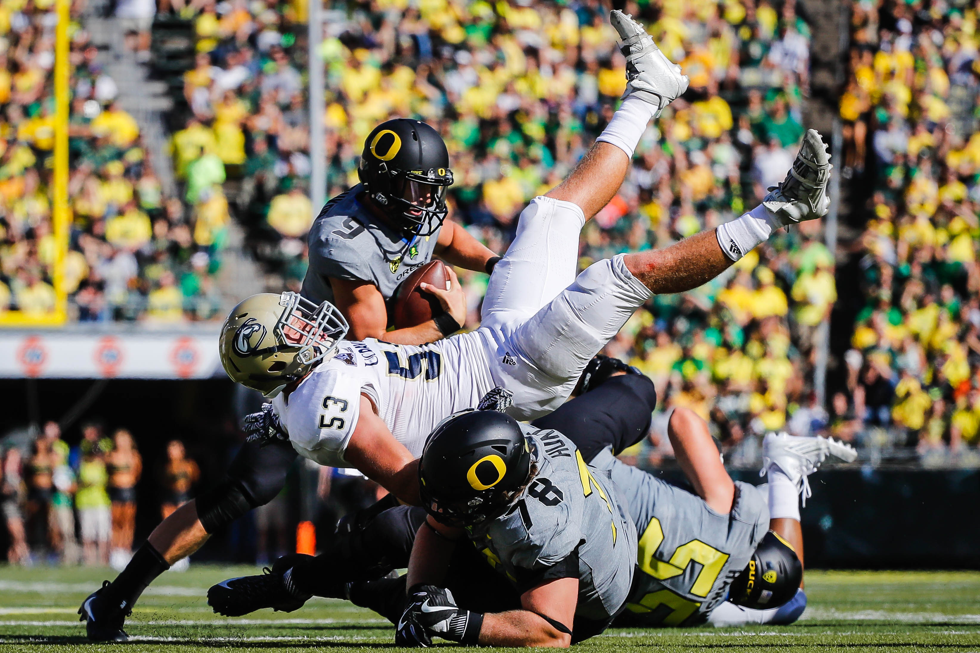 FILE - In this Sept. 3, 2016, file photo, Oregon quarterback Dakota Prukop (9), avoids a collision as UC Davis linebacker Russell Reeder (53) and Oregon offensive lineman Cameron Hunt (78) tangle during an NCAA college football game in Eugene, Ore. Prukop