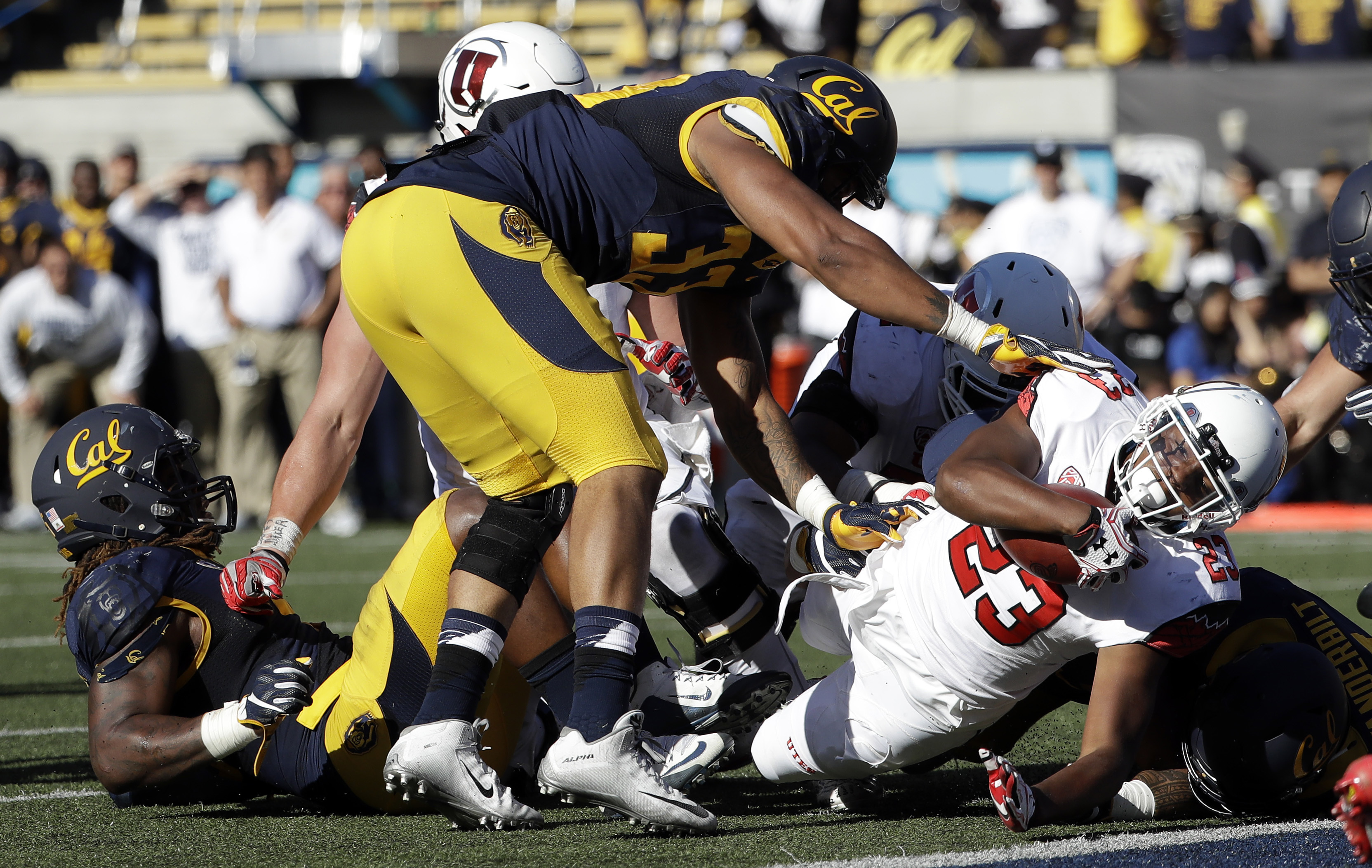 Utah running back Armand Shyne (23) scores on a 4-yard rushing touchdown against California during the first half of an NCAA college football game Saturday, Oct. 1, 2016, in Berkeley, Calif. (AP Photo/Marcio Jose Sanchez)