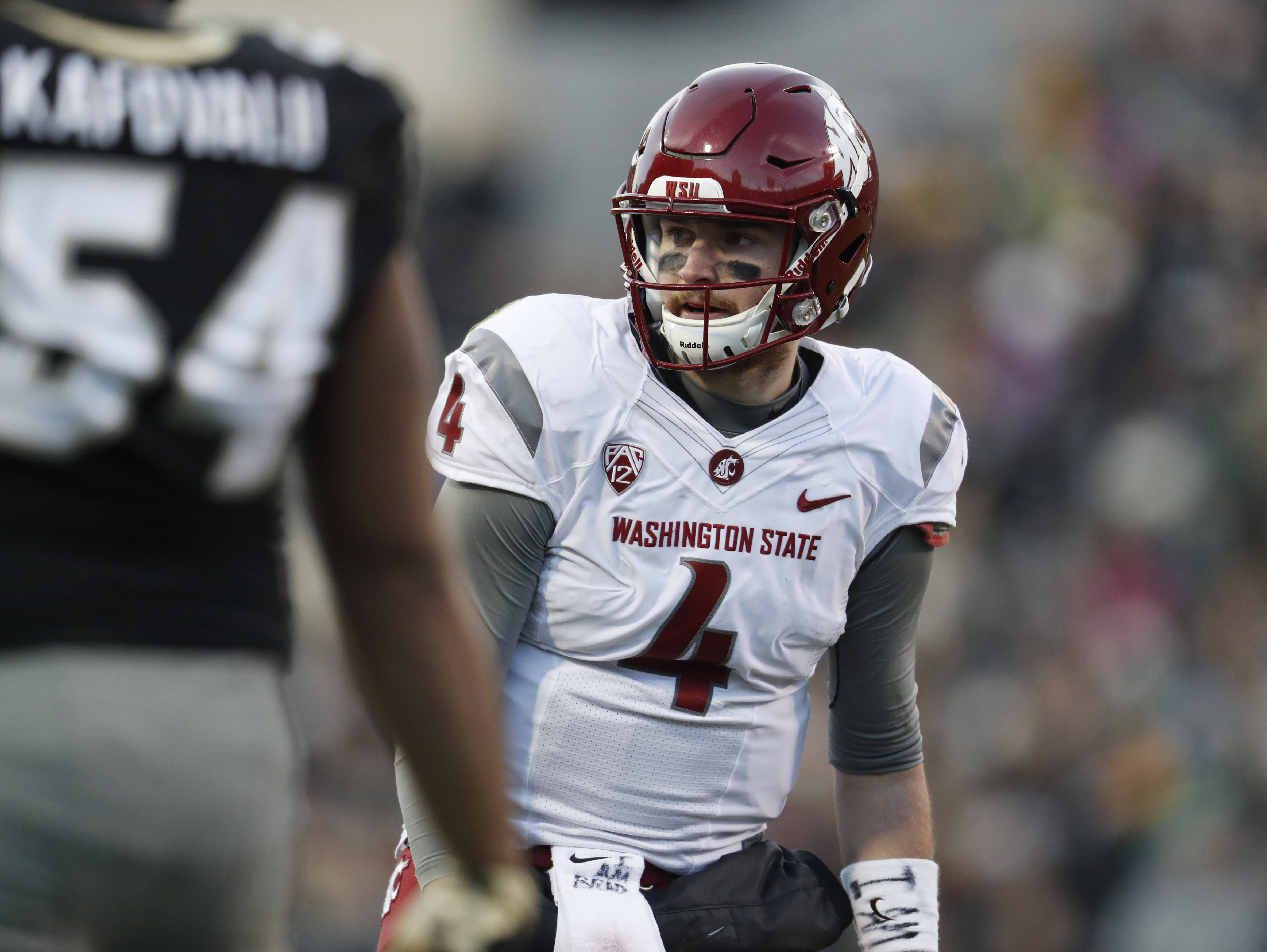 FILE - In this Nov. 19, 2016, file photo, Washington State quarterback Luke Falk (4) prepares for a play during the team's NCAA college football game against Colorado in Boulder, Colo. Washington State play Washington this week. The Apple Cup could also b