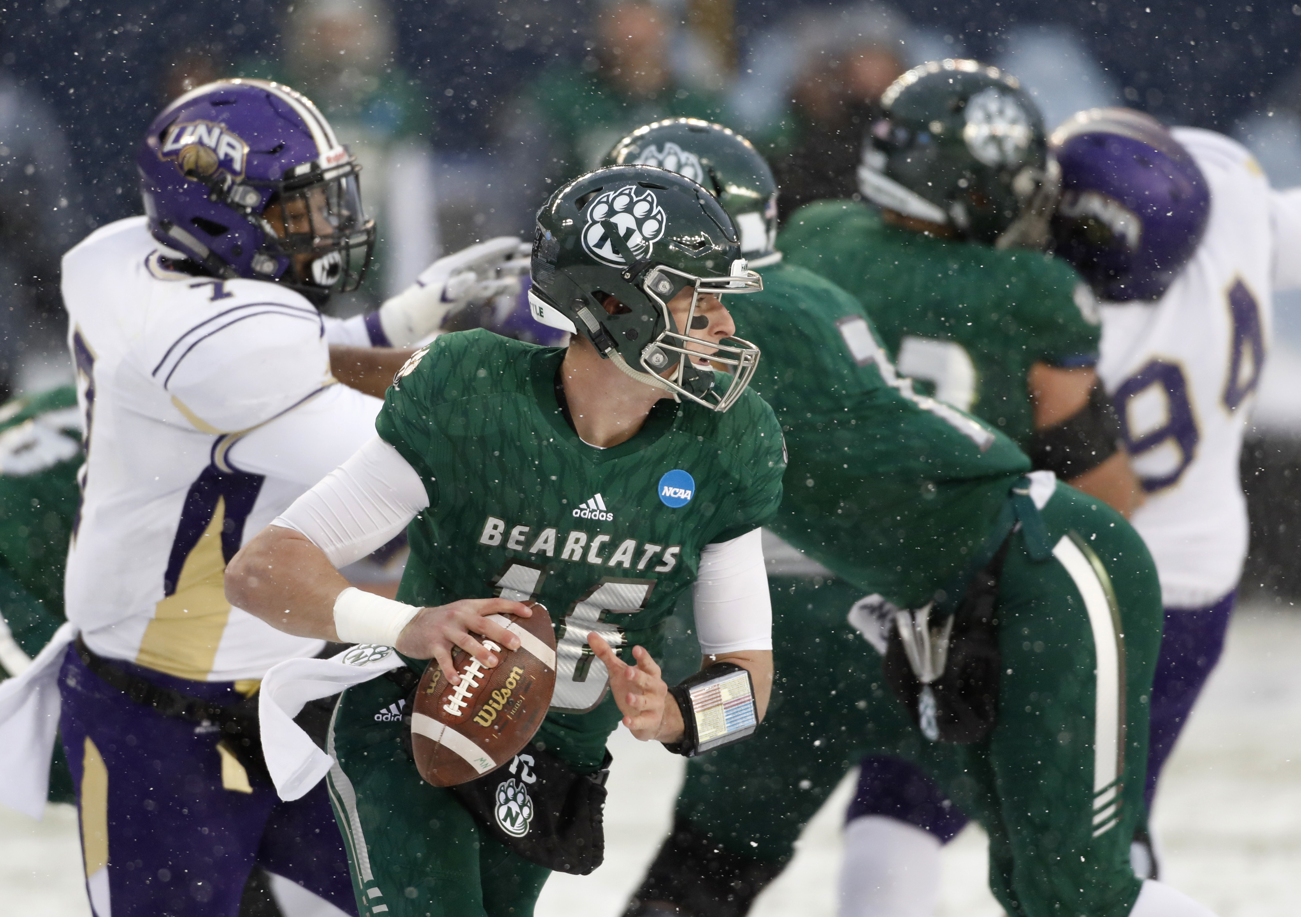 Northwest Missouri State quarterback Kyle Zimmerman (16) looks downfield during the first half of the NCAA Division II championship college football game against North Alabama, Saturday, Dec. 17, 2016, in Kansas City, Kan. (AP Photo/Colin E. Braley)