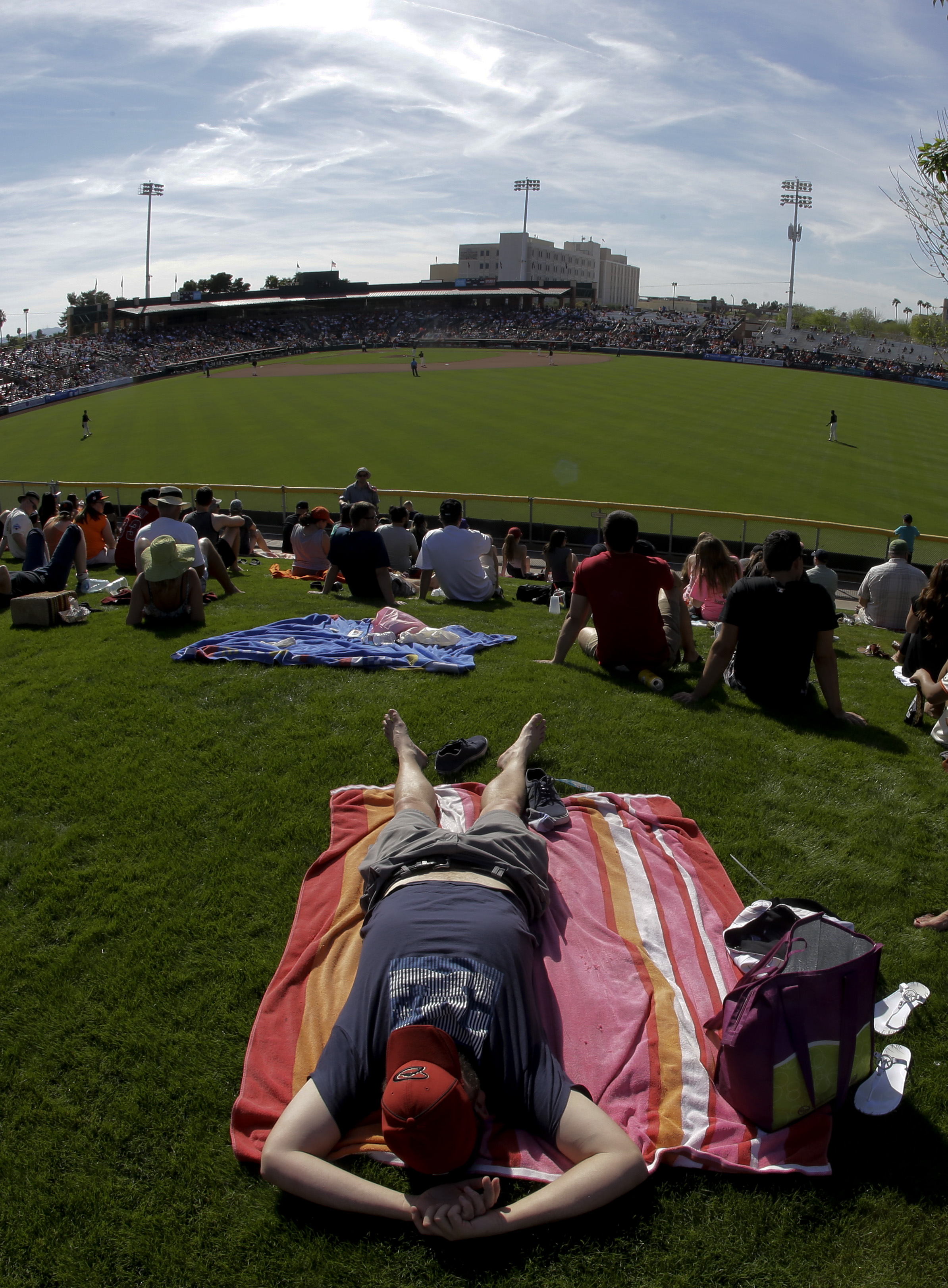 Corey Whitcher naps in the outfield sun during a spring baseball game between the San Francisco Giants and the Los Angeles Angels in Scottsdale, Ariz., Wednesday, March 2, 2016. (AP Photo/Chris Carlson)